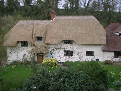The whole house rethatched in March 05.jpg (1498780 bytes)